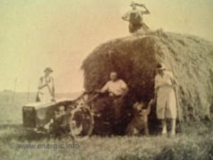 Energic motoculteur C7 B4L pulling hay on wagon www.energic.info