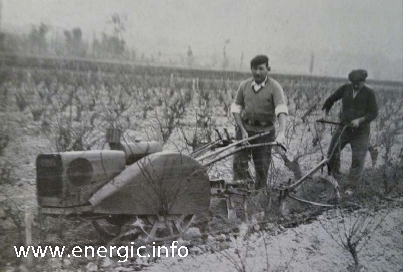 Vine work Energic C7 B4L