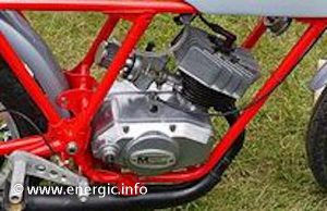 Energic Motobineuse engine supplier Minarelli www.energic.info