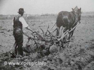 Horse-drawn plough. energic.info